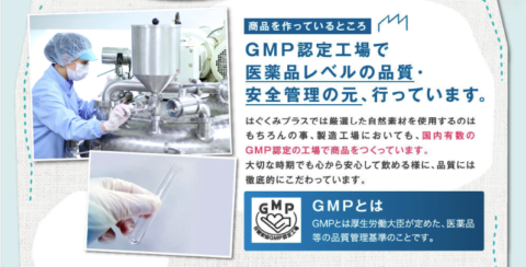 はぐくみ 葉酸 GMP